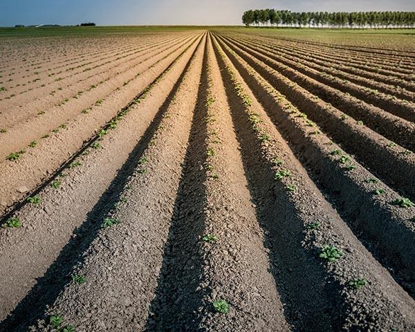 Over onze bodem, slimme boeren en duurzaamheid